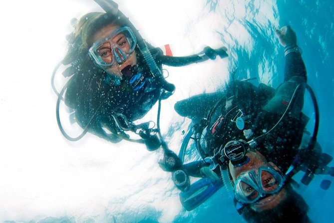 You will find out what it is like to breathe underwater. Your Divemaster/Instructor will teach you the basics of SCUBA equipment and use.<br><br>You will then get to experience SCUBA diving in the local pool or Hunter Spring. All of your SCUBA equipment is included.