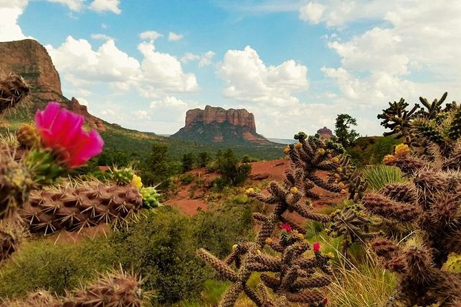 This 10-hour tour makes the most of a one day journey to Sedona. See Sedona via a small group of up to five passengers maximum. This small group tour gives you a more personal and comfortable experience as you make your way to your final destination. You may be taken to a variety of stops throughout this tour such as the Chapel of the Holy Cross, Tlaquepaque, or Bell Rock Vista. You'll also get a chance to experience some of the mystique that is Sedona.