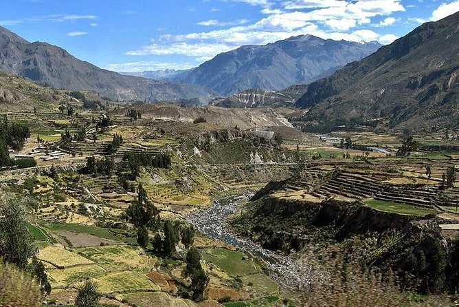 Visit the Colca Canyon, one of the deepest places on earth, on an overnight trip from Arequipa. Home to the Andean Condor, the valley has pre-Incan roots and features Spanish colonial towns. Take in stunning views of volcanoes and the valley's terraces.