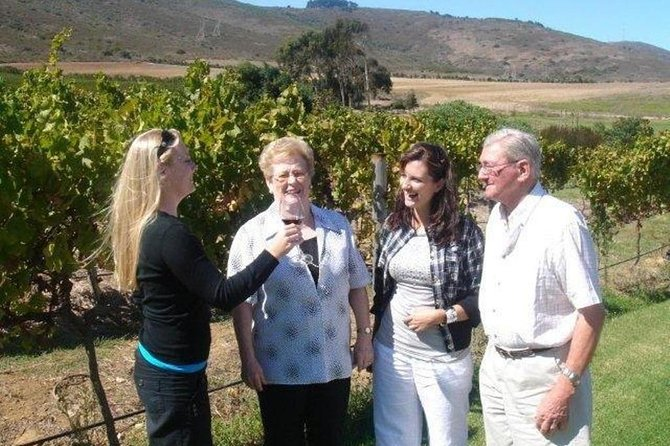 This is a bespoke tour and your guide will discuss your wine and vineyard preferences prior to commencing the tour in order to put together the itinerary. As your tour progresses you and your guide can also modify the itinerary. There are no constraints. You may set out on a Wine Tour and end the day watching the Whales in Gordons Bay.