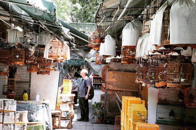 MÁS FOTOS, Small-Group Tour: Local Markets Hopping Tour in Hong Kong