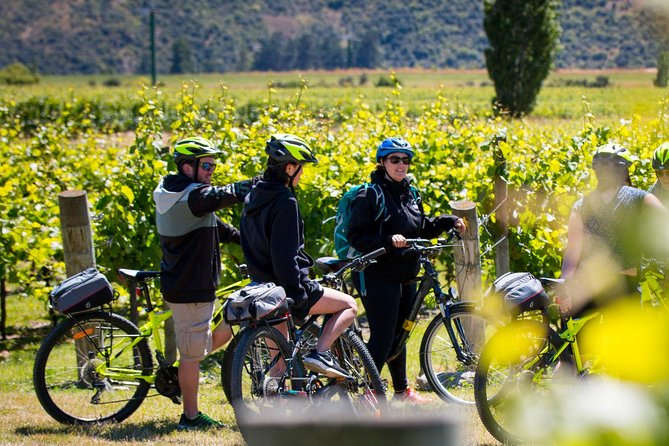 Gibbston Valley Guided Wine & Cycle Tour, Queenstown, New Zealand