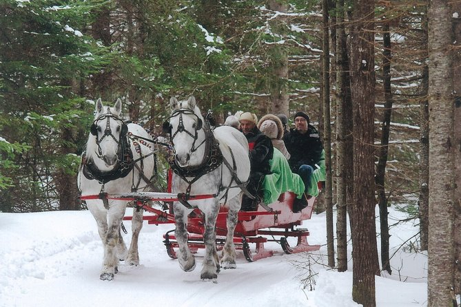 Lead by two Percheron horses, our experienced driver will take you on a private sleigh ride over fields and through forests.