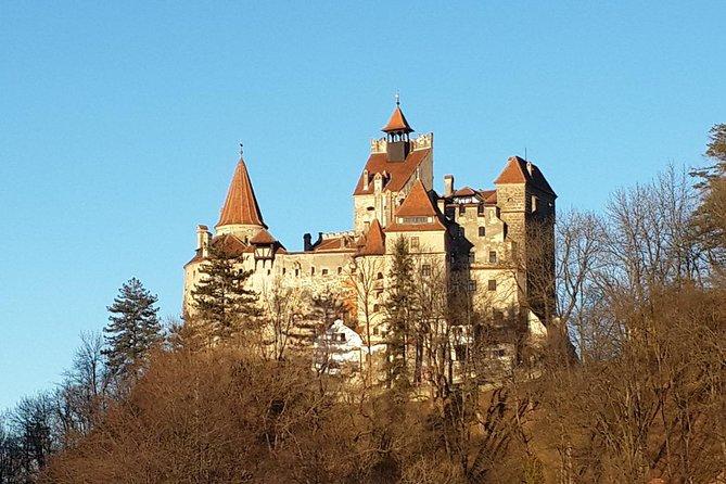MÁS FOTOS, Private Tour: Bran Castle, Rasnov Fortress, Harman & Prejmer Fortified Churches