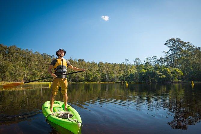 Walkabout Creek Adventures Stand Up Paddle Board Hire, Brisbane, Austrália