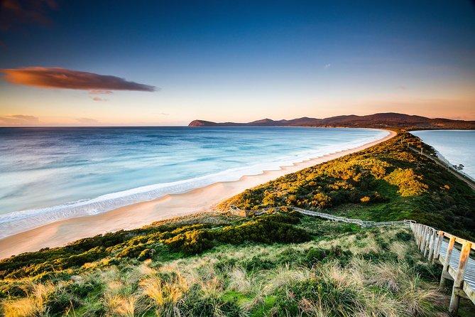 MÁS FOTOS, 2 Day - Two of Tasmania's Best Tour