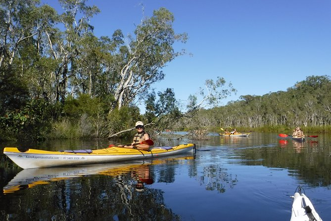 Self-Guided Noosa Everglades Kayak Tour, Noosa y Sunshine Coast, AUSTRALIA