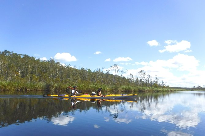 Full-Day Guided Noosa Everglades Kayak Tour, Noosa y Sunshine Coast, AUSTRALIA