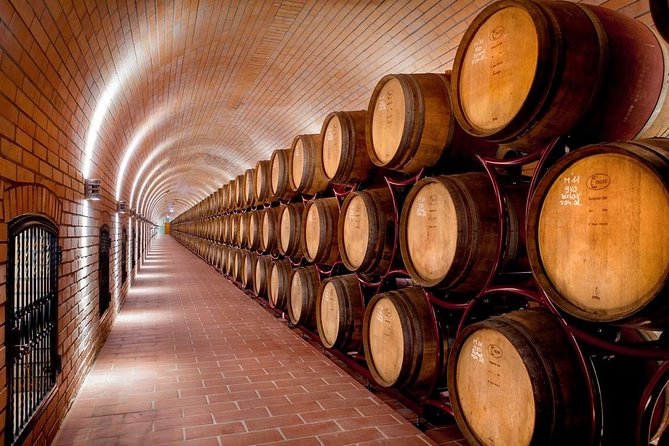 Full-day tour Villany region - the gem of Pannon wines, Pecs, HUNGRIA