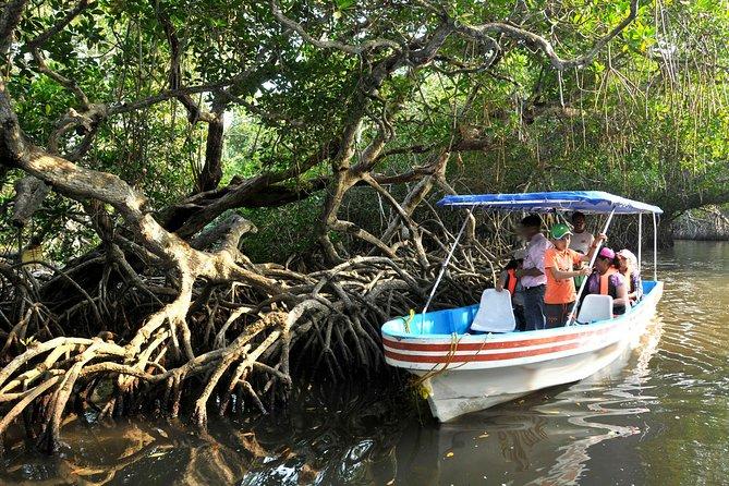MÁS FOTOS, Mandinga And Boat Trip Tour