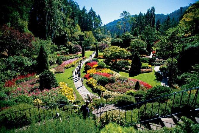 MAIS FOTOS, Victoria e os Jardins de Butchart saindo de Vancouver