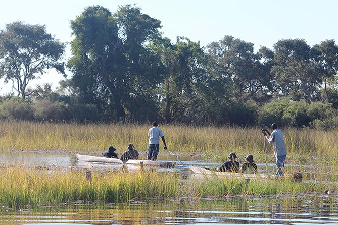 Depending on the water level, you will board the boat near Audi Camp at 7am and head along the Boro channel on a motor boat to Boro Mokoro Station where you will be met by your Poler for the day.Themokoro is ideally suited as transport in the delta as you will move quietly through shallow waters.