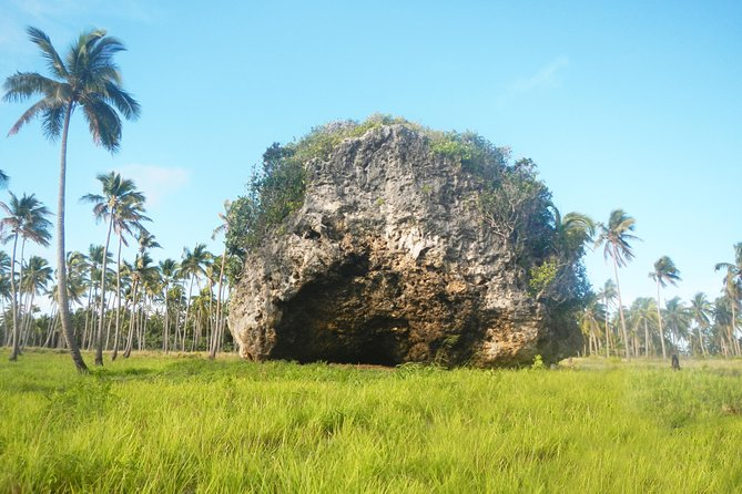 It is your chance to learn the unique sights ofWestern side in Tongatapu, where you will visit the lovely sandy beaches and the historical sites. You will see the Royal Palace and Tombs, the Villa, Three headed coconut tree, the Flying foxes and of course – spectacular blowholes.