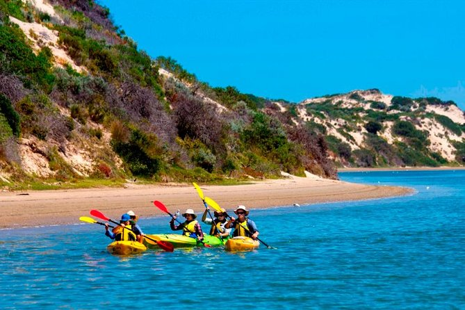 Relax on this 6-hour, small-group kayaking tour of the Coorong National Park and Murray Mouth region. A walk across the sand dunes to the Southern Ocean will allow you to stretch your legs while the guide takes you on a bush tucker walk. This tour includes delicious food, three hours of kayaking, and numerous stops along the way.