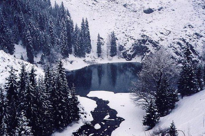 MÁS FOTOS, Heaven Lake Day Tour from Urumqi