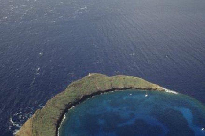 Aventura de esnórquel en Molokini y tortugas verdes desde Maui para grupos pequeños, Maui, HI, ESTADOS UNIDOS