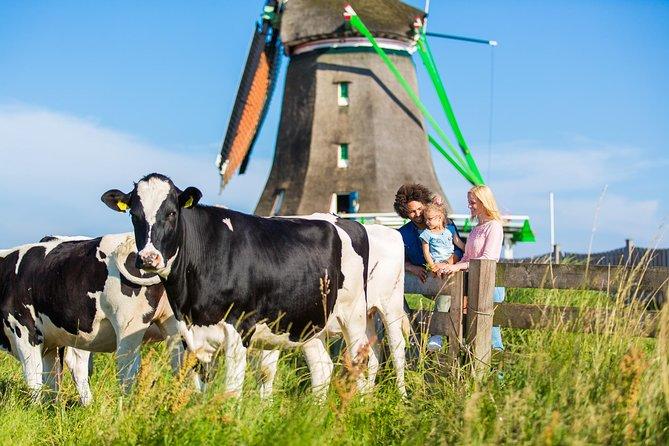 Escapada de un día a la campiña y los molinos holandeses desde Ámsterdam, con cata de quesos en Volendam, Amsterdam, HOLANDA