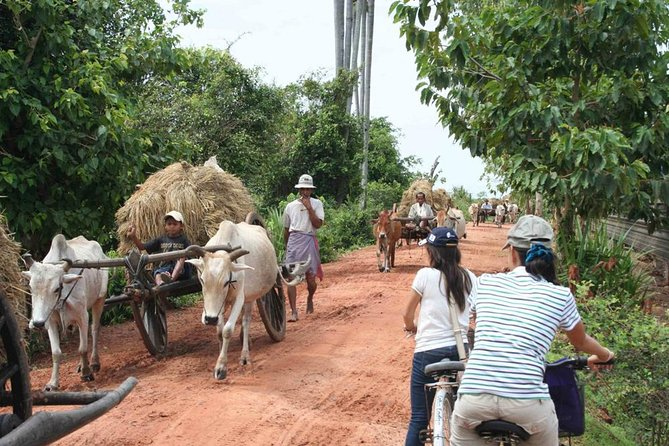 This adventurous Join-in day tour will take you out of the city for a day in rural Cambodia. You will be traveling in a small group with other travelers.<br><br>We will hop on a bike and ride on the red dirt tracks through the stunning countryside. You will be passing rice fields and small villages. On our way, we stop by the local fish market where you can watch traditional Khmer daily fish trading. After the ride, we take a small break to get awell-deserved drink.<br><br>We will board a boat to Kompong Khleang, the area's most authentic floating village. We will enjoy a Cambodian lunch with friendly locals in a stilted village house. After lunch, we get back on board our boat to reach a pagoda located on an island. We will pass by the monk school and watch the monks in their day-to-day routine. Then we'll head to the Vietnamese floating village. You'll get to see the floating school, hospital and local shops.<br><br>We arrive back into Siem Reap at about 5pm<br>