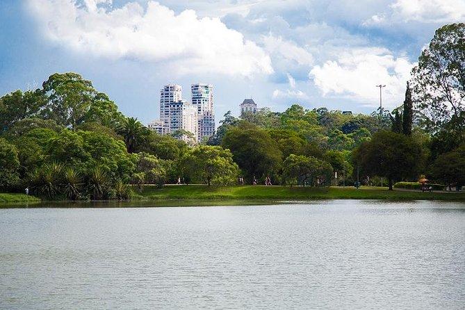 MÁS FOTOS, Recorrido privado por São Paulo desde la terminal de cruceros de Santos