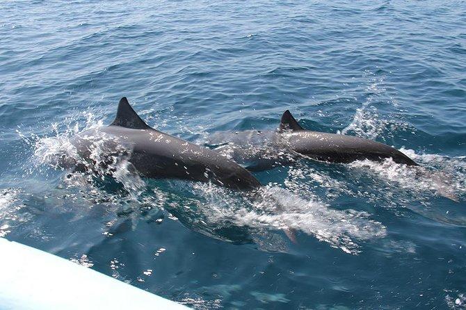 Huatulco Shore Excursion: Seven Bays Private Tour, Huatulco, MEXICO