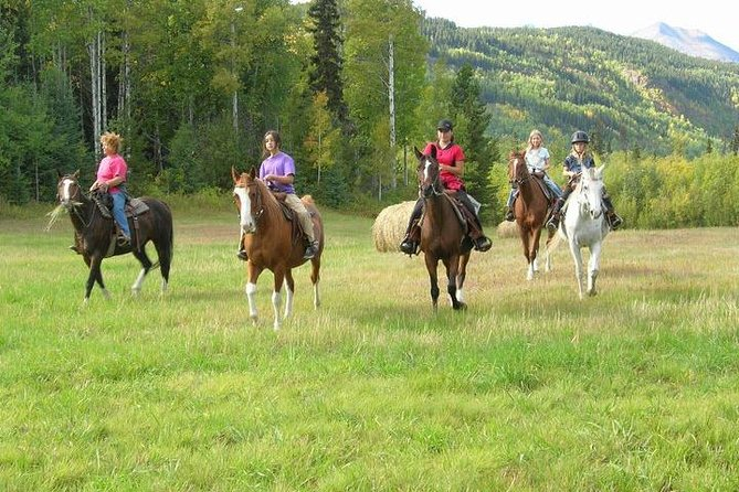 Discoverthe beauty of the Bulkley Valleyon a 1-hour trail ride in Smithers, British Columbia. Wander a variety of terrain, from hilly forest to open grassland, on this family-friendly exploration of the nearby countryside. This ride is great for groups and children with a wide range of comfort levels on horseback.