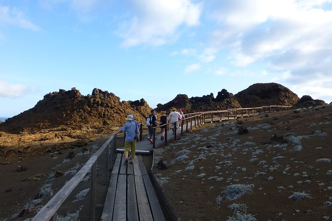 Explore Bartolome Island with a full-day tour from Puerto Ayora (Santa Cruz Island).Navigate to one of the most iconic spots in Galapagos. The volcanic islet just off the east coast of Santiago Island holds one of the most beautiful landscapes in the archipelago. Hike to the breathtaking viewpoint on the top of the island and cool-off afterwards snorkeling in the water around Bartolome. Swim with penguins, sea lions, marine Iguanas, Galapagos Sharks. The day-trip includes pick-up and drop-off from your hotel, box lunch and professional guidance. <br><br>Group Maximum: 2 travelers<br><br>IMPORTANT NOTE: In order to fulfill this tour, you must be at Santa Cruz Island (Puerto Ayora) one day prior to departure.