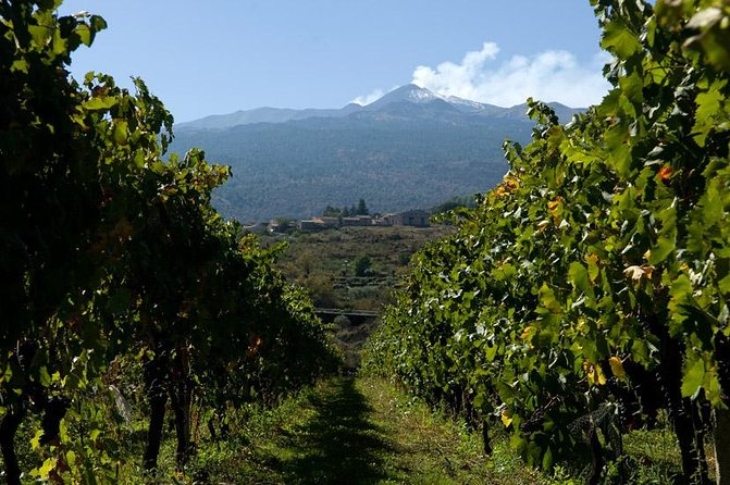 See a different side of Sicily with this tour of Mt. Etnathat departsfrom Catania. Enjoy breathtaking views and taste the wines of one of the best wineries of the area, all while on the highest active volcano of Europe. This excursion journeys to old craters and lava flow caves, and is perfect for adventurous travelers.
