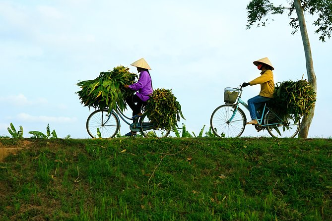 Full-Day Mekong Delta Bike Tour from Ho Chi Minh City, Ho Chi Minh, VIETNAM