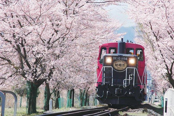 Sagano Romantic Train & Arashiyama, Kiyomizudera, Fushimi Inari Taisha Day Tour, Kioto, JAPON