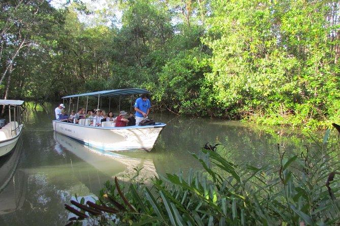 Damas Mangrove Boat Tour, Quepos, COSTA RICA