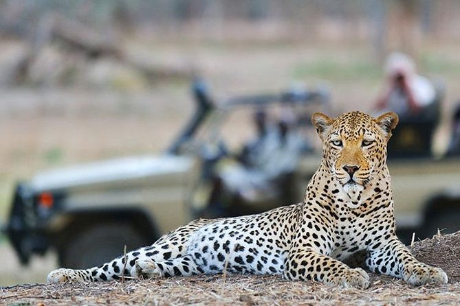 Enjoy a Big Five Safari in a Malaria-free region<br><br>Our 2 day Cape Town Safari offers Cape Town visitors the opportunity to experience the Big Five in their natural environment. The 10.000 ha (25.000 Acres) private Game Reserve is home to 30 different species of animals including Cheetah, Rhino, Lion, Elephant, Buffalo, Giraffe, Hippo, Letchwe and Oryx. We drive.about 2.5 hours from Cape Town. On the way back, depending on your preferences, we can visit a popular wine estate.<br><br>Included:<br> • Two professional 2.5h Game Drives in an open safari vehicle with knowledgeable ranger.<br> • Lunch, accommodation, breakfast & dinner<br> • Soft drinks and bottled water<br> • Driver, private transportation from/to Cape Town.<br> • Cape Town hotel pick up and drop off.<br><br>Thisprivate tour can be adapted to your needs.