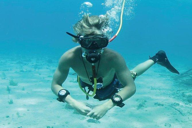 MÁS FOTOS, Crucero de fiesta en Punta Cana con buceo de superficie, buceo Hooka y parapente
