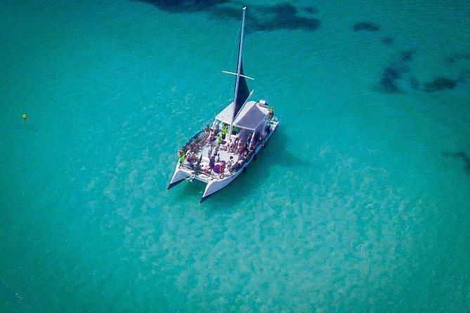 MÁS FOTOS, Catamarán de fiesta en Punta Cana con buceo de superficie y parapente