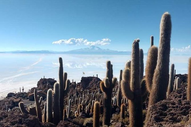 Private Tour To Uyuni Salt Flats with pick up from Hotels in Colchani, Uyuni, BOLIVIA