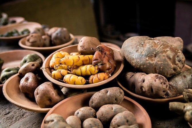 Potato Cultural Tour at Pisaq Potato Park Including Lunch, Cusco, PERU