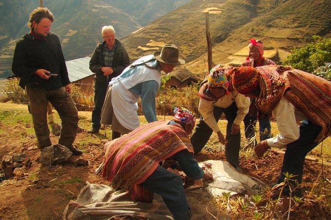 Excursão cultural no Parque da Batata de Pisac, incluindo almoço, Cusco, PERU