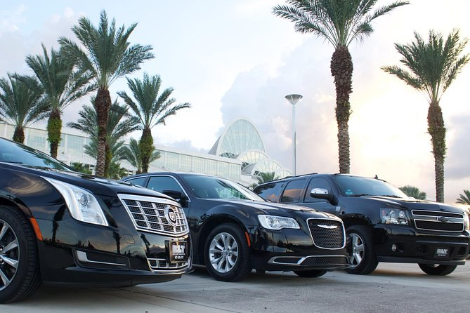 Traslado al puerto Orlando: Aeropuerto a Port Canaveral, Orlando, FL, ESTADOS UNIDOS