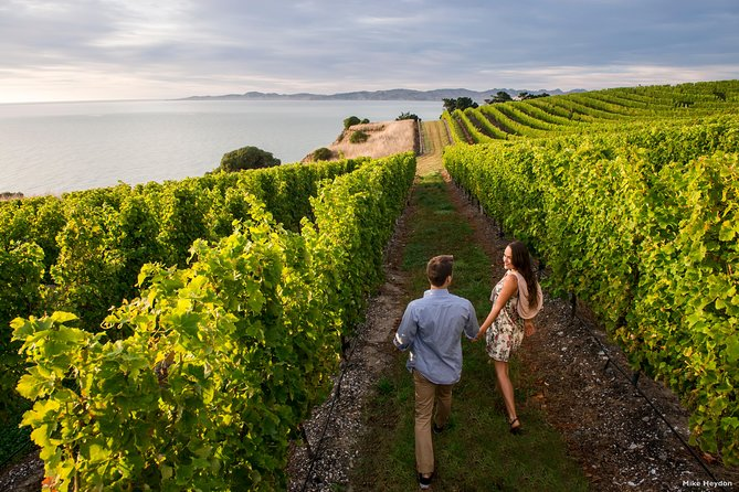 Taste some of New Zealand's most vibrant and flavorful wines at the multi-award winning Marlborough cellar doors on this full-day small-group tour. During this scenic journey around the valley, you will encounter a range of fruity Sauvignon Blancs, lusty Aromatics and Pinot Noir to die for.<br><br>Enjoy lunch (at your own cost) at a vineyard restaurant and finish your tour with a taste of hand-made gourmet chocolates. What an exceptional day!