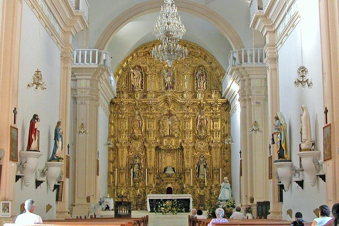 El Rosario Half-Day Tour with Optional Visit to Caimanero Lagoon, Mazatlan, MEXICO
