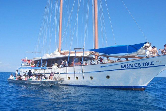 Snorkel the Fijian coral reefs, swim in the blue water or simply relax and enjoy the natural beauty on this Fijian full-day cruise.