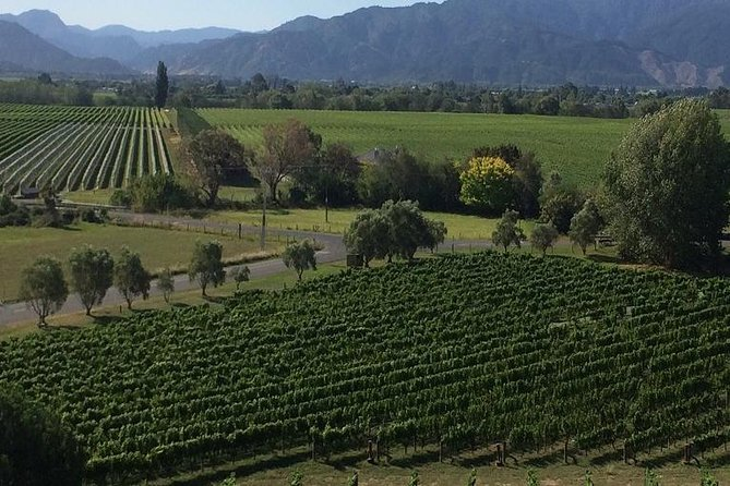 Half-Day Marlborough Gourmet Tasting Tour from Blenheim, Blenheim, NUEVA ZELANDIA
