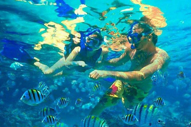 Scubadoo Punta Cana, Punta de Cana, DOMINICAN REPUBLIC