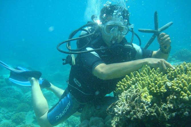 Nha Trang fishing and snorkeling tour with BBQ, Nha Trang, VIETNAM