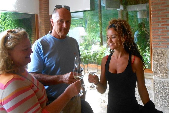 The Essential Rioja Wine Tour Experience is a completely private wine tour to the famous La Rioja wine-making region. Transport in a comfortable, private, air-conditioned vehicle to the beautiful wine country. Experience 3 winery visits with accompanying tastings, sightseeing, beautiful photo opportunities of a Frank Gehry designed winery, and a private guided tour of the medieval city of LaGuardia. One of the wineries will include a tour of their 400 year old cave with subsequent tastings. You will experience a total of 7-9 unique tastings in total on this wine tour.
