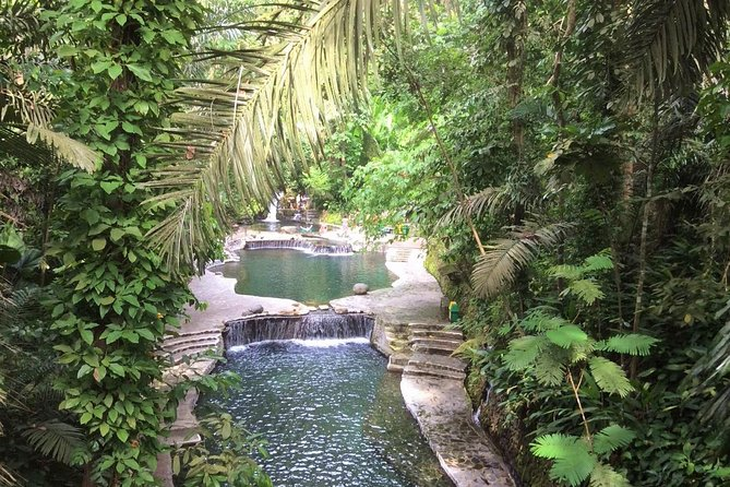 Discover a paradise, neatly hidden between two mystical mountains and get close to nature on this tour to Hidden Valley. Admire lush vegetation, waterfalls, and virgin forest before taking a dip in one of the pools.