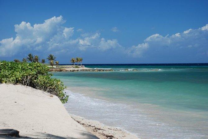 Excursión por la costa Falmouth: Experiencia Bob Marley, Trelawny, JAMAICA