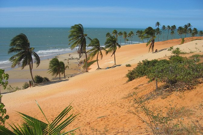 Take a full day trip from Fortaleza to the district of Paraipaba where the beautiful Lagoinha beach is situated! This area is one of the largest and most popular attractions because it used to be the ancient hiding place for French pirates. Now, Lagoinha is a quiet colony of fisherman, set amongst paradise landscapes dotted with palm trees, beaches and colorful sand dunes!