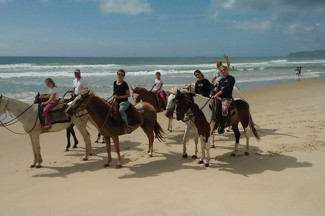 Guided beach horseback riding tour. This guided tour has stunning views of the beach, sand dunes and rain forest. It makes you feel like you are away from the rest of the world, immersed in nature.