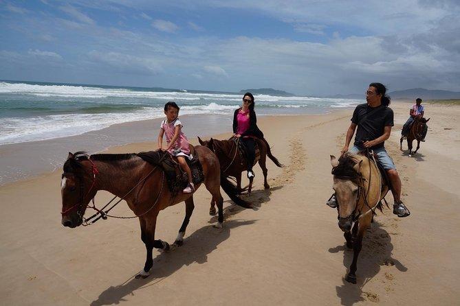 Cabalgata en la playa de Florianopolis, Florianopolis, BRASIL