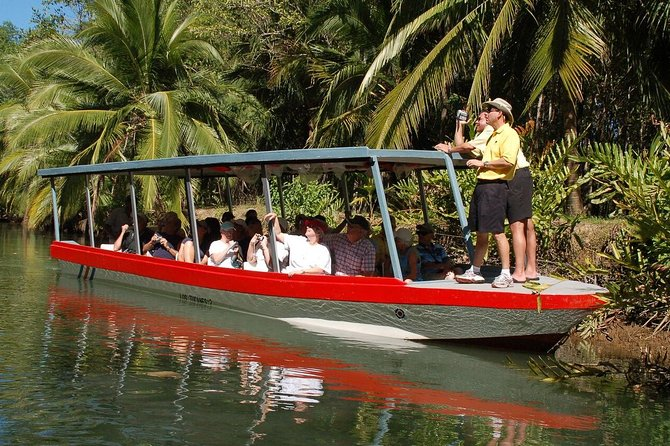 The Damas Island mangrove's wetland is part of the biggest mangrove's ecosystem in Central America. There are hundreds of different types of wildlife like birds, mammals, reptiles and fish that can easily be spotted from the boat. Come and enjoy this educational and eco-friendly tour.
